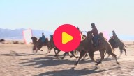 Karrewiet: Kamelenrace in China