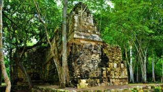 Meer dan 1.000 jaar oud Maya-paleis ontdekt