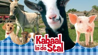 Kabaal in de stal