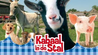 Kabaal in de stal