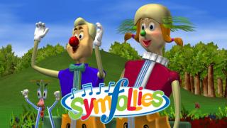 Symfollies