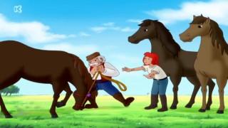 De avonturen van Bibi en Tina: Wilde paarden