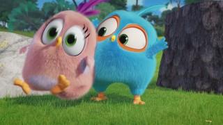 Angry Birds Blues: Reeks 1 - Aflevering 17