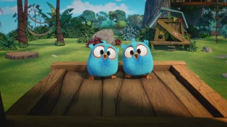 Angry Birds Blues: Reeks 1 - Aflevering 11