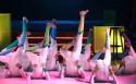 Circus: De artiesten