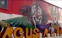 Karrewiet: beroepen - circusartieste