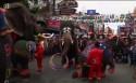 Karrewiet: Olifanten dansen en spelen voetbal