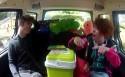 Camping Ketnet: Autospelletjes: Dierenketting