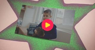 Kaatjes Kameraadjes: Dieren: Eendje is ziek
