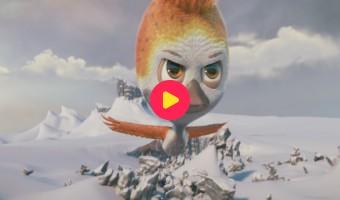 Film: Pluisje durft te vliegen