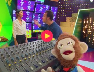 Wrap: Olly bedient de studio