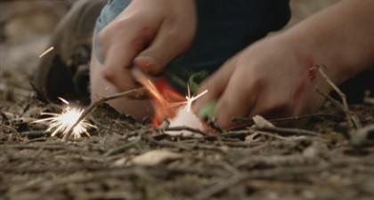 De spelregels van het bos
