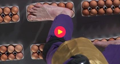 De kracht van het ei