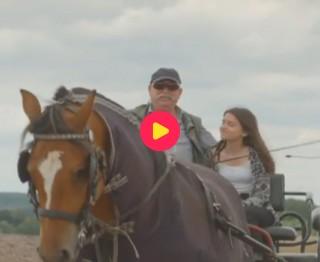 Vivabomma: paardenmennen